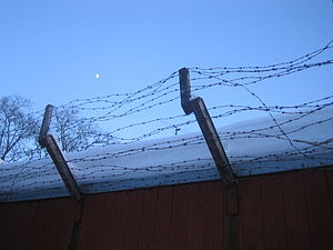 Barbed wire fence with snow.