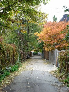 autumn-montreal-alley